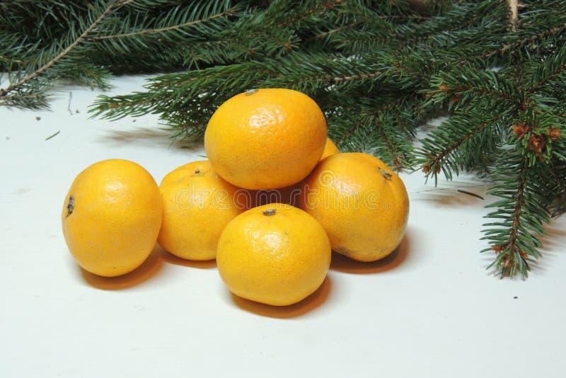 Предпосылка, дерево и tangerines рождества стоковые фото