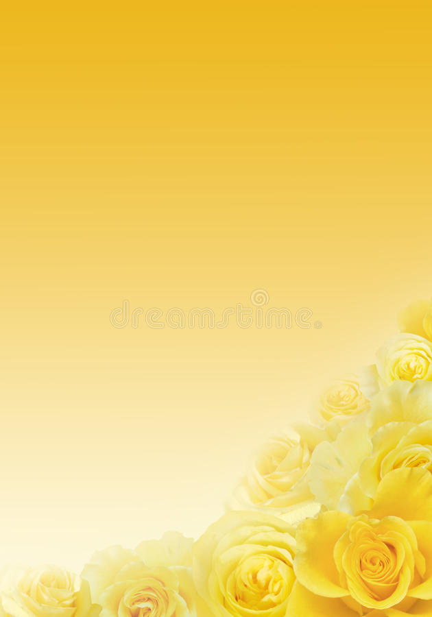 Предпосылка желтых роз иллюстрация штока