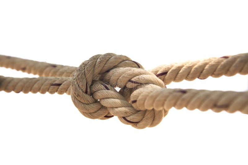 Предпосылка завязанная веревочкой белая стоковое фото