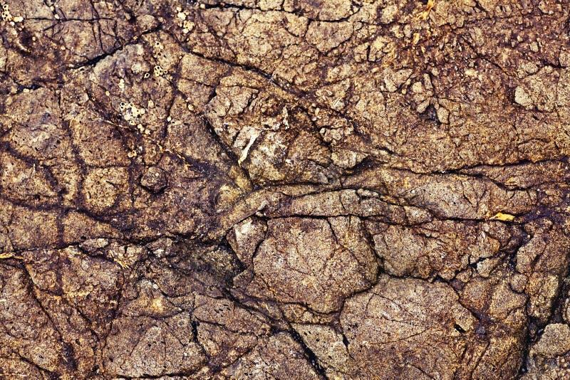 Предпосылка камня Брайна, безшовная текстура утеса стоковая фотография rf