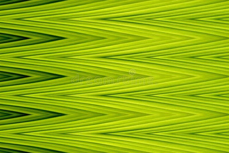 Предпосылка конспекта искусства зеленой волны зигзага острая (сделанная от листьев банана) иллюстрация штока