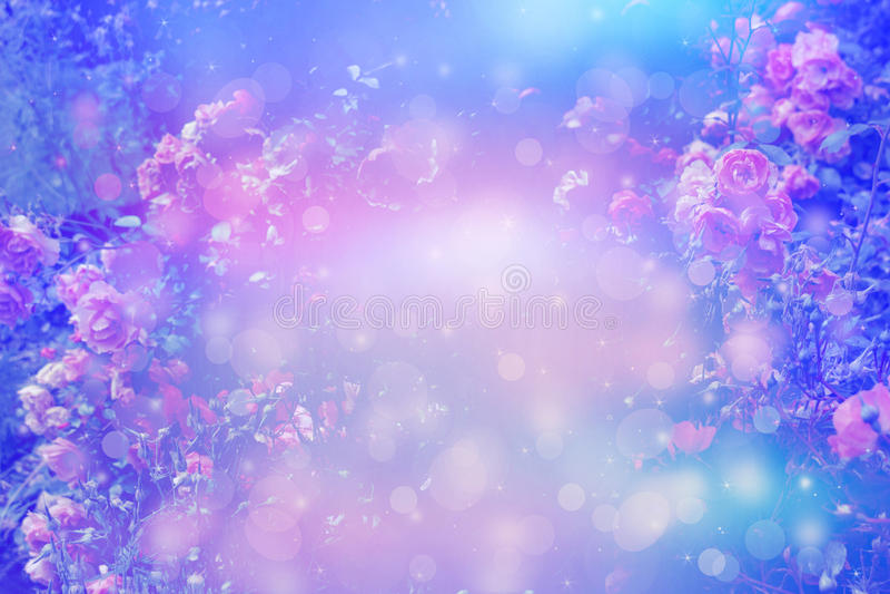 Предпосылка красивых роз художническая мечтательная с светами bokeh и флористической рамкой стоковое изображение