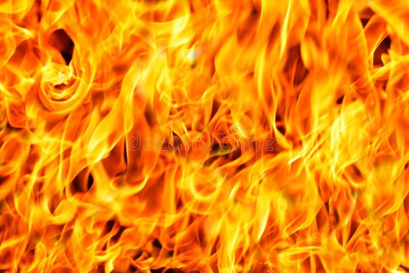 Предпосылка огня стоковая фотография