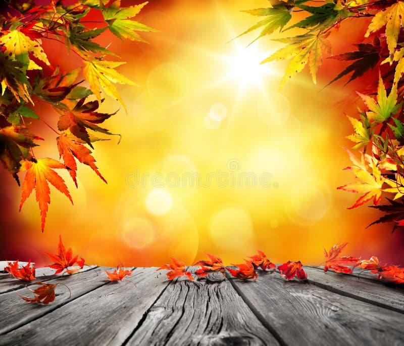 Предпосылка осени с красный падать выходит на древесину стоковые фото