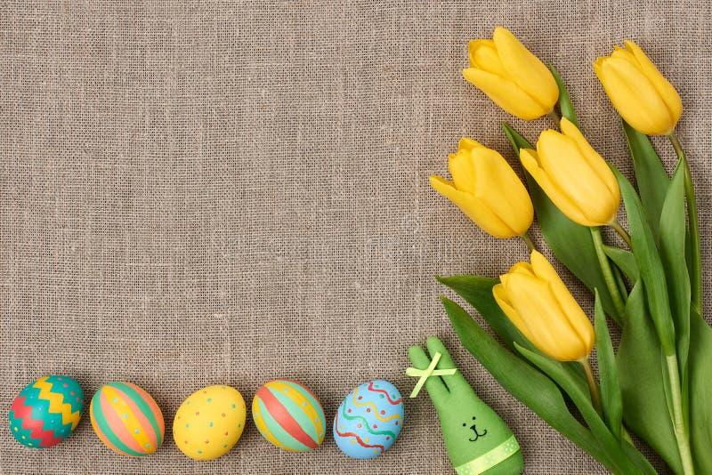 Предпосылка пасхи, яичка, кролик, желтые тюльпаны стоковое фото