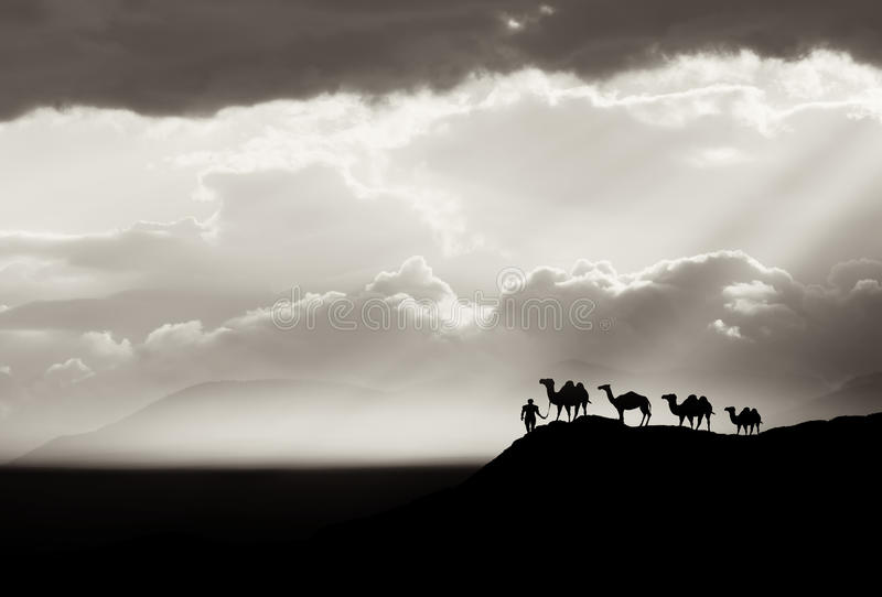 Предпосылка пустыни Bw стоковая фотография rf