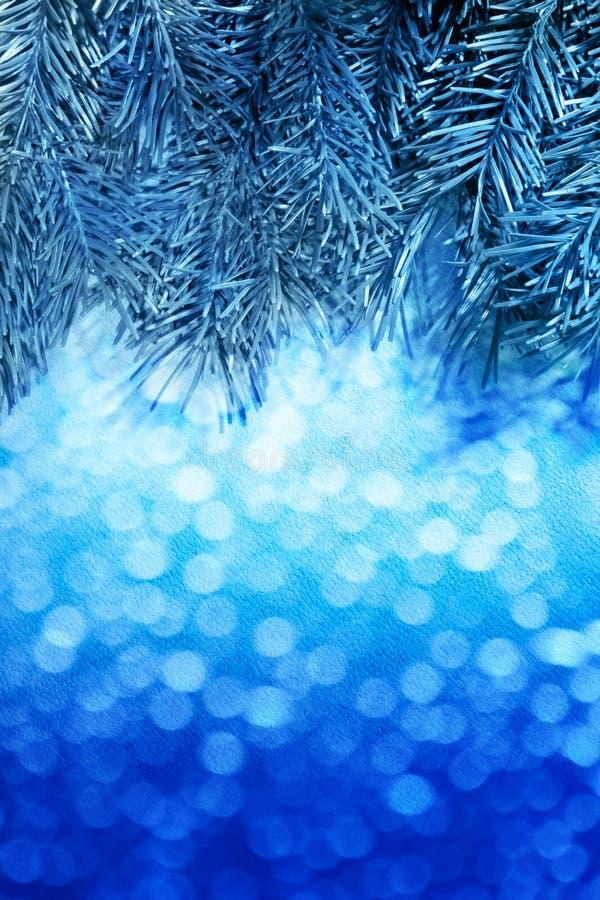 Предпосылка рождества нерезкости голубая с елью стоковые фотографии rf