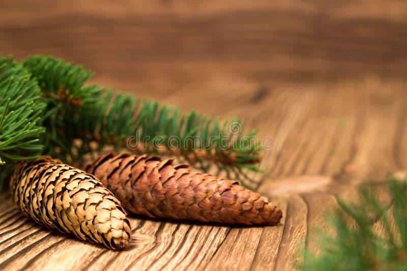 Предпосылка рождества с ветвями и конусами ели стоковое изображение rf