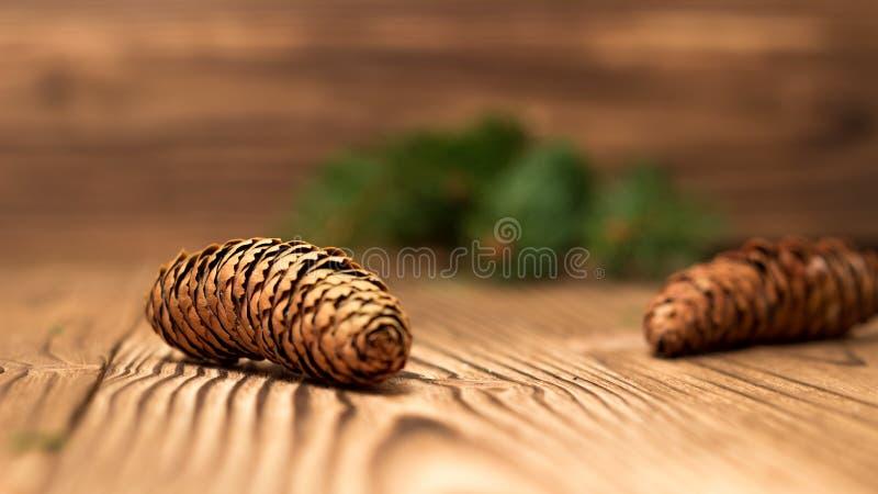 Предпосылка рождества с ветвями и конусами ели стоковые фотографии rf