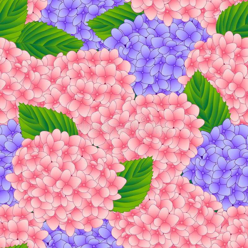 Предпосылка розового и фиолетового цветка гортензии безшовная также вектор иллюстрации притяжки corel бесплатная иллюстрация