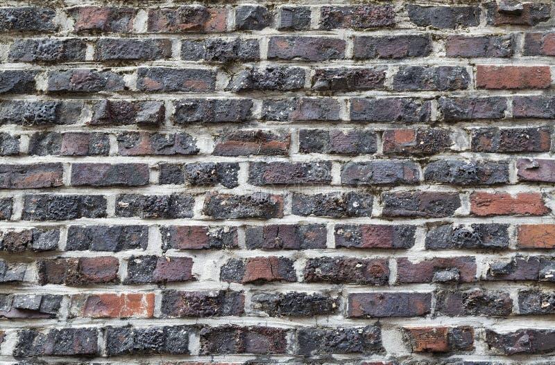 Предпосылка старой винтажной пакостной кирпичной стены с гипсолитом шелушения, текстура стоковая фотография