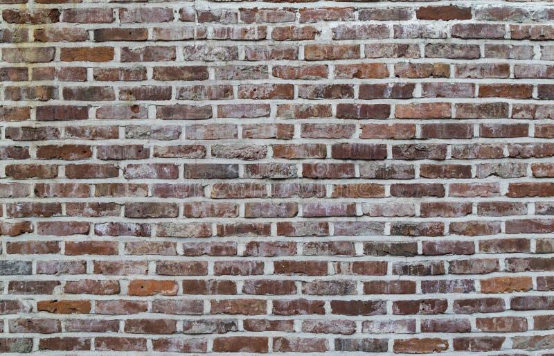 Предпосылка старой винтажной пакостной кирпичной стены с гипсолитом шелушения, текстура стоковое фото rf