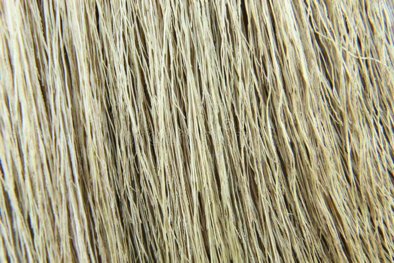 Предпосылка сухой травы стоковое фото rf