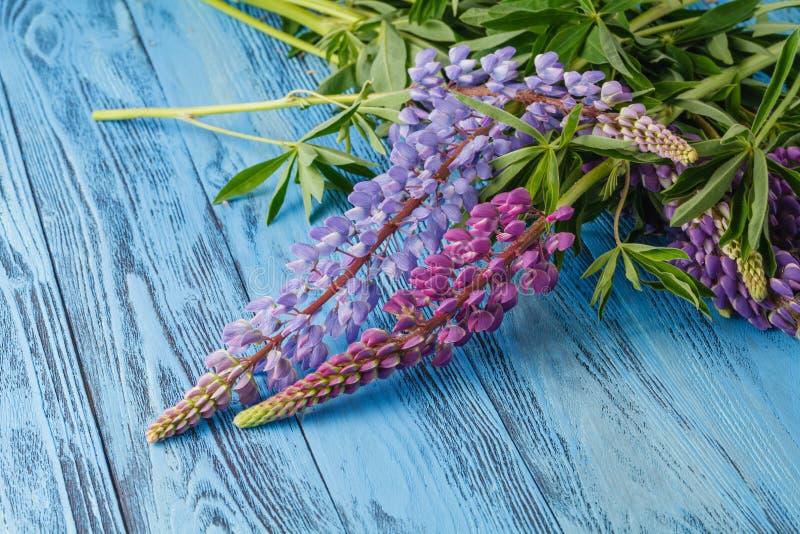 Предпосылка с букетом lupine на голубых древесинах стоковые фотографии rf
