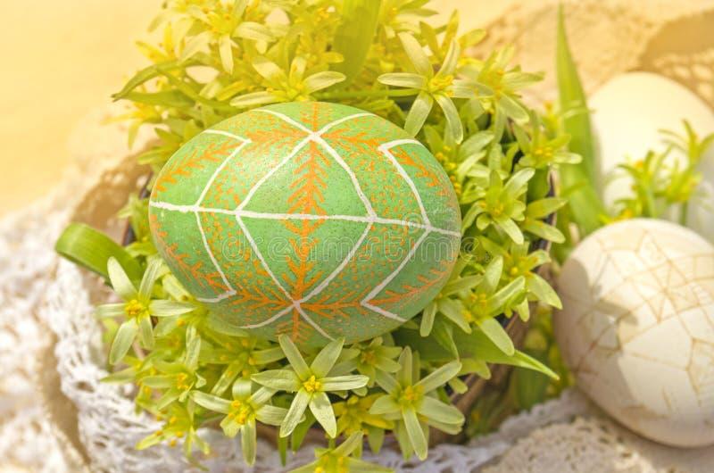 Предпосылка с пасхальными яйцами и цветением цветка стоковые фотографии rf