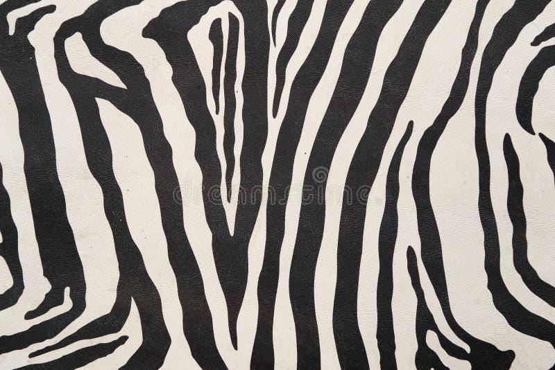 Предпосылка с текстурой зебры стоковая фотография rf