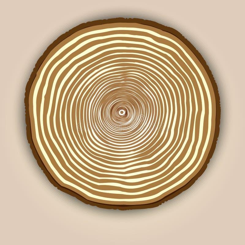 Предпосылка текстуры вектора деревянная с кольцами дерева иллюстрация штока