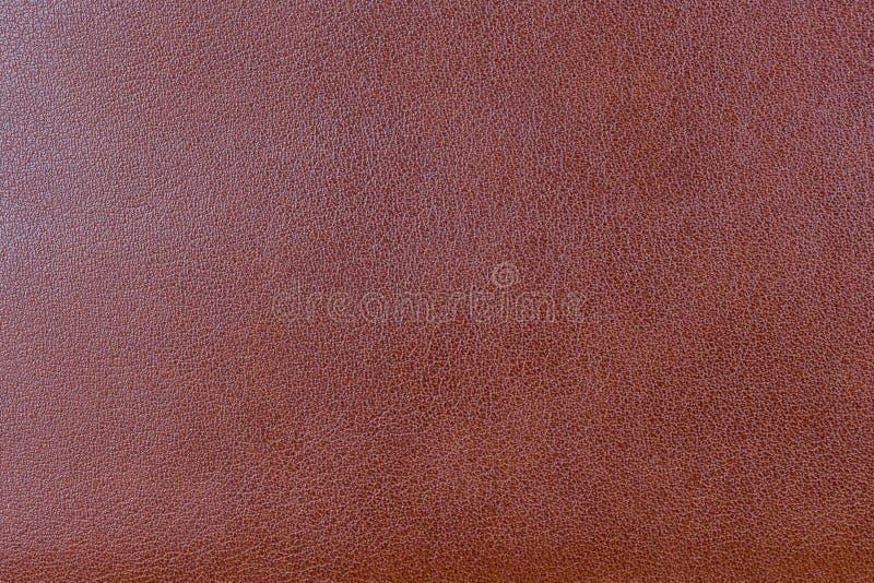 Предпосылка текстуры кожи стоковые изображения rf