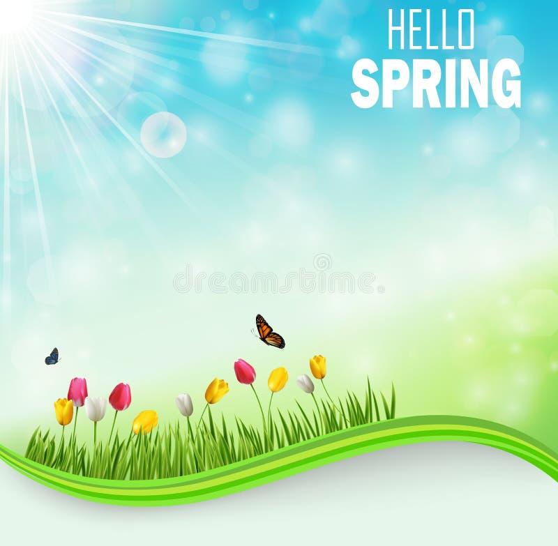 Предпосылка луга весеннего времени с цветками и бабочками тюльпана иллюстрация штока