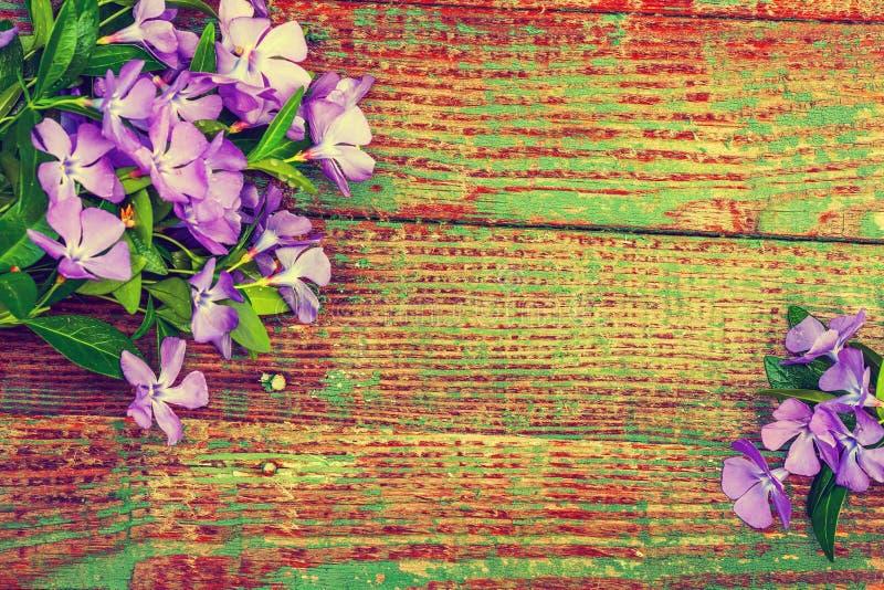 предпосылка цветет деревянное стоковая фотография rf