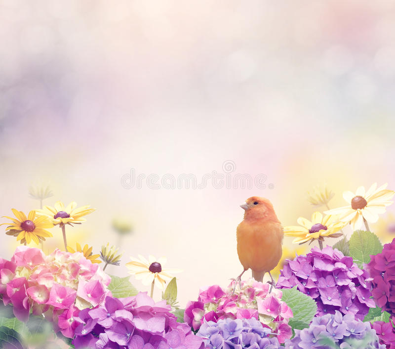 Предпосылка цветка с желтой птицей стоковое фото rf