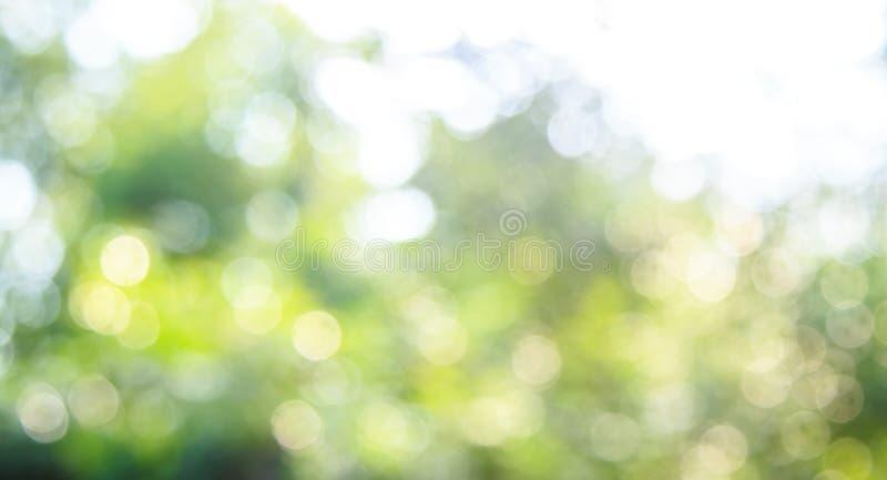 Предпосылка bokeh природы стоковая фотография rf
