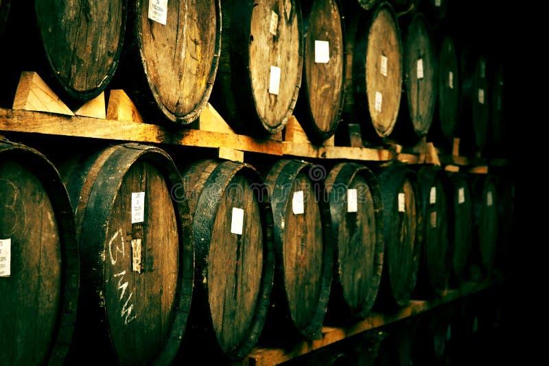 предпосылка 3d barrels модельное белое вино стоковое фото rf