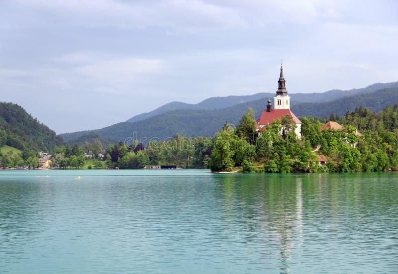 Предположение церков паломничества Mary и кровоточенного озера, Словении стоковые изображения