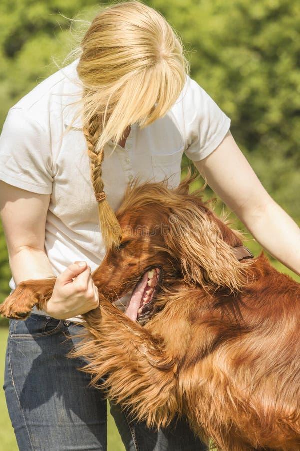 Предприниматель собаки прижимаясь стоковые фото