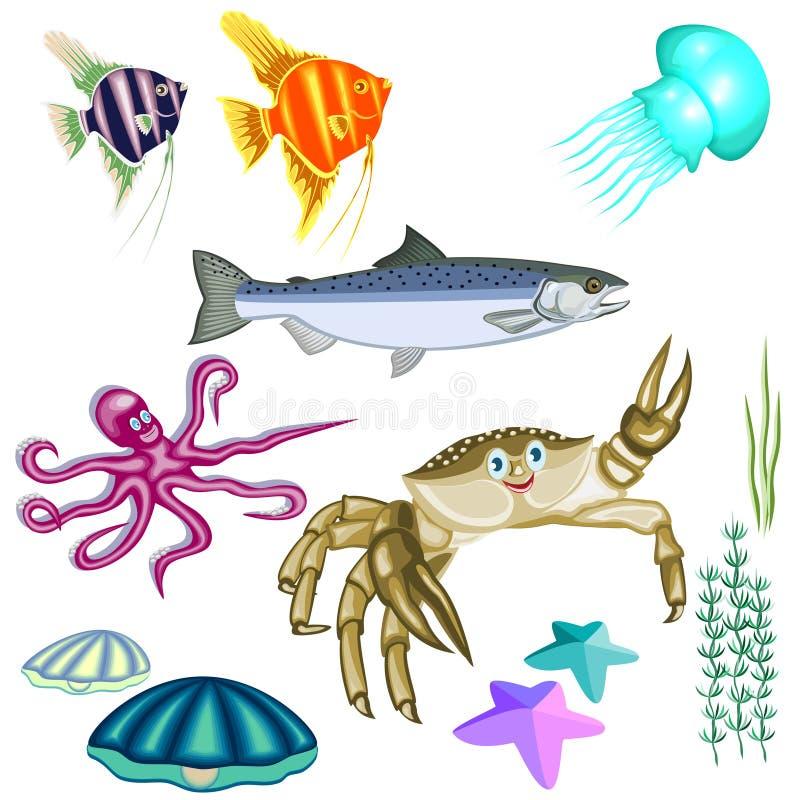 Представители морской флоры и фауны: рыбы, краб, осьминог, медуза, раковина иллюстрация вектора