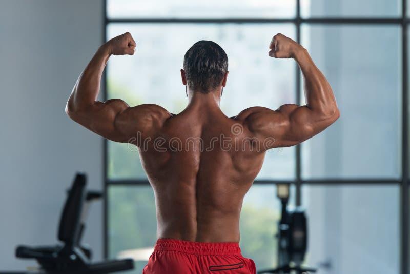 Download Представление бицепса мышц мышечного человека изгибая заднее двойное Стоковое Изображение - изображение насчитывающей фасоли, мышца: 81815289