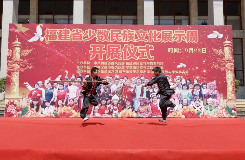 Представление боевых искусств национальности Shes стоковые изображения