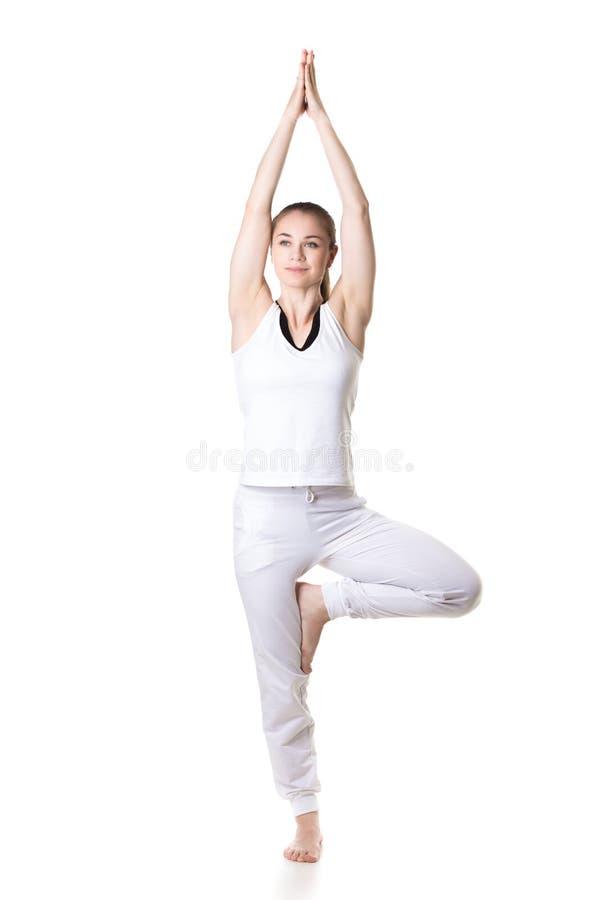 Представление дерева йоги стоковые изображения rf