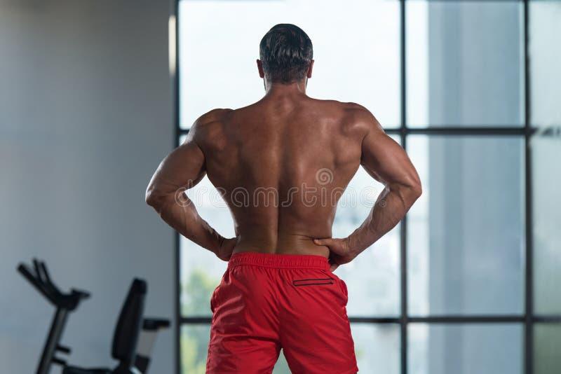 Download Представление задних мышц мышечного человека изгибая Стоковое Изображение - изображение насчитывающей подбрюшные, самомоднейше: 81815265