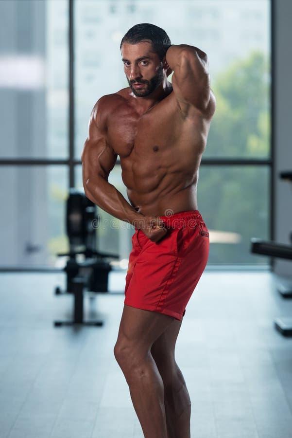 Download Представление комода мышц молодого культуриста изгибая бортовое Стоковое Фото - изображение насчитывающей изгибать, bodysuits: 81815238