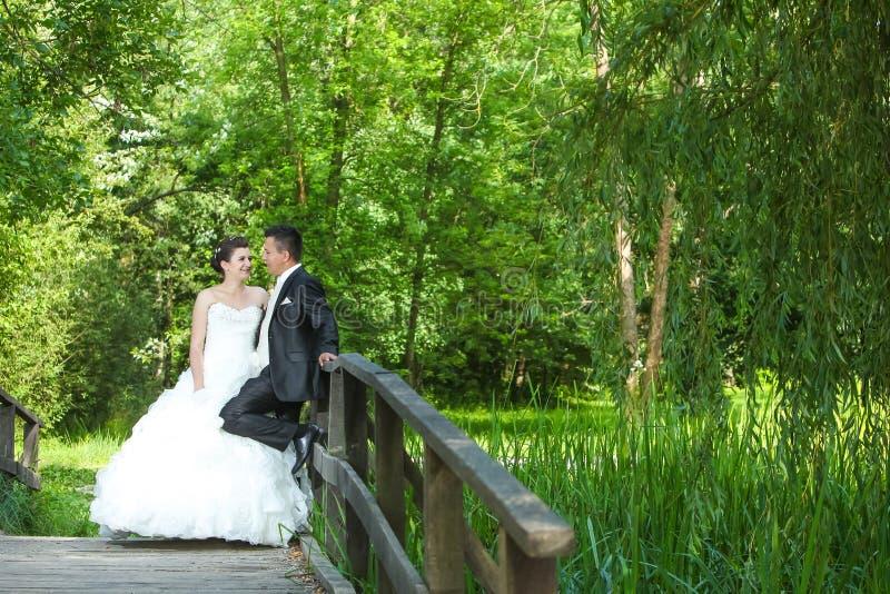 представлять groom невесты стоковые изображения