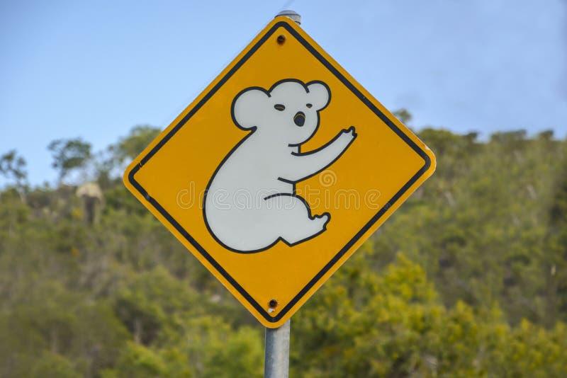 Предупредительный знак коалы в Квинсленде, Австралии стоковое изображение rf
