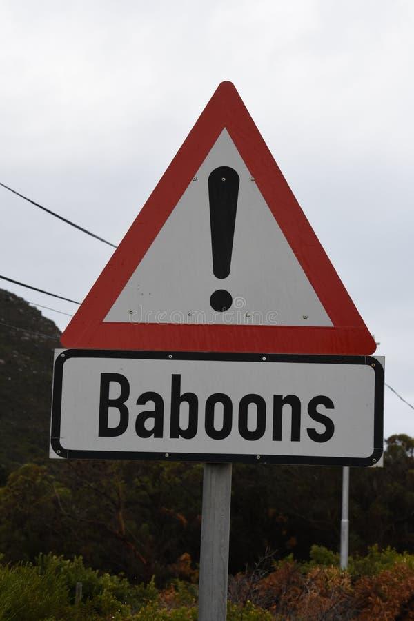 Предупредительный знак павиана стоковое изображение rf