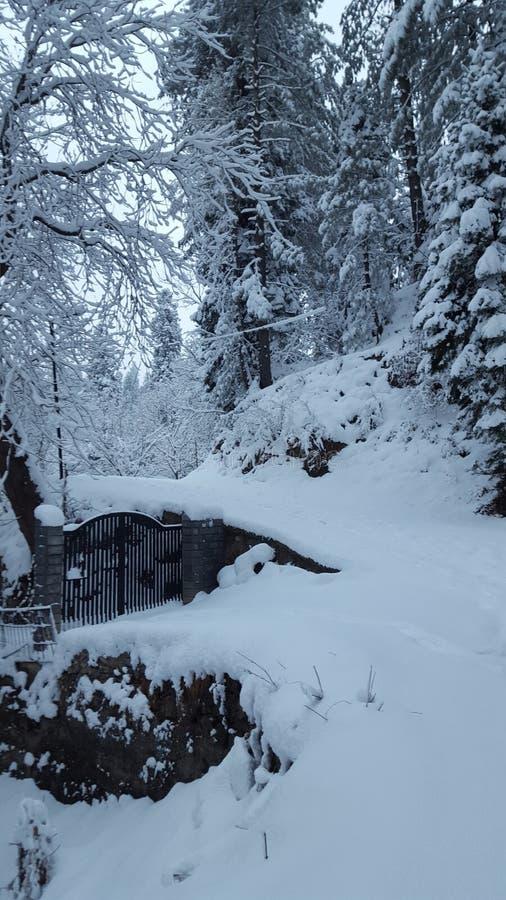 Предусматриванный при красота Азии красивая Пакистана снега mesmerising путешествуя зима назначения стоковое фото rf