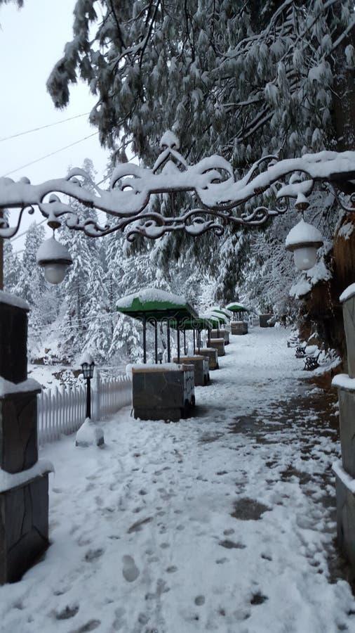 Предусматриванный при красота Азии красивая Пакистана снега mesmerising путешествуя зима назначения стоковые изображения rf