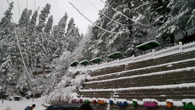Предусматриванный при красота Азии красивая Пакистана снега mesmerising путешествуя gali nathiya зимы назначения стоковые изображения