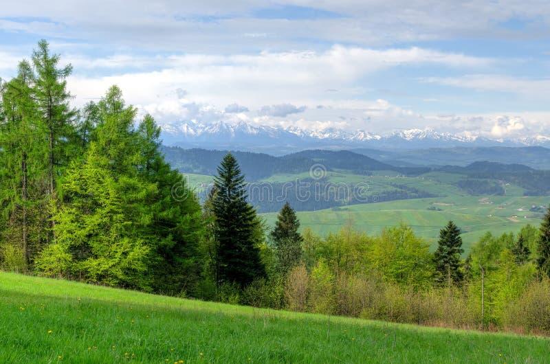 предыдущая весна горы ландшафта стоковое изображение