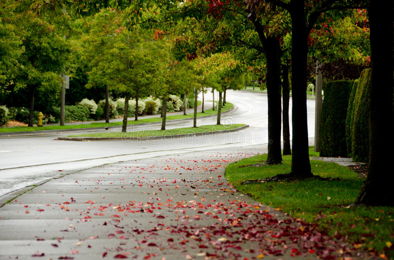 Предыдущая осень в Redmond стоковая фотография rf