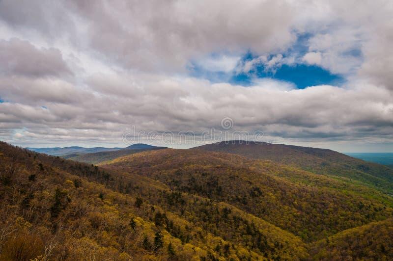 Предыдущий взгляд весны гор голубого Риджа и Пьемонта, в национальном парке Shenandoah, Вирджиния. стоковое изображение