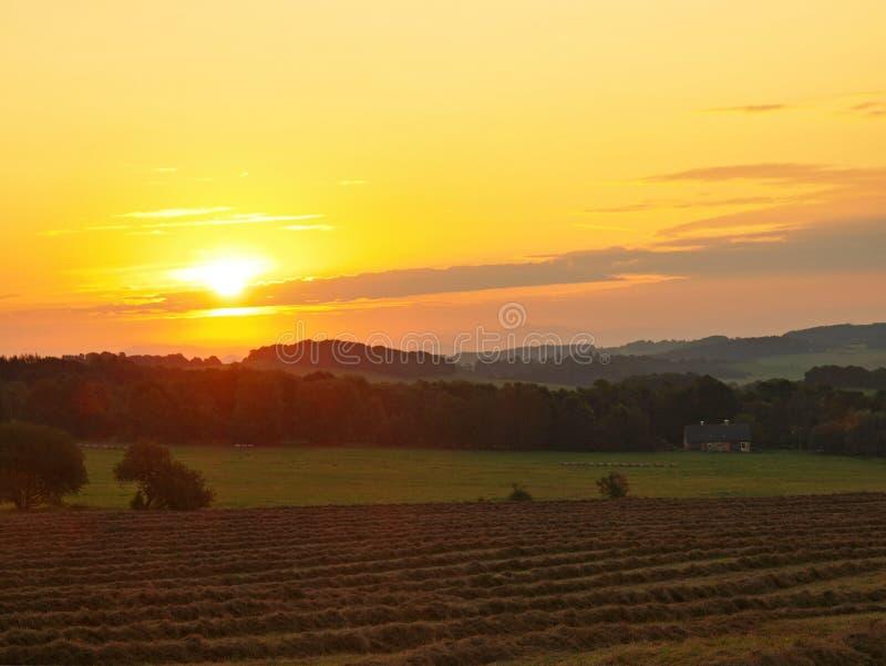 Предыдущий туманный взгляд утра к сельской местности, лугам и полям.  Солнце над горизонтом. стоковое фото
