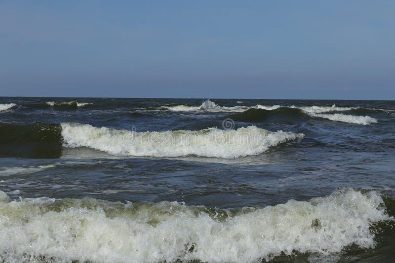 прибалтийская эстония около somethere tallinn моря стоковое фото rf