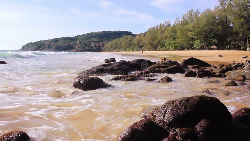 Прибой моря в спокойном тропическом заливе озеро phuket Таиланд домов цветков сток-видео