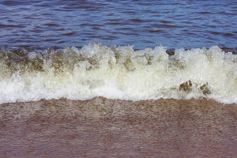 Прибой на песочном береге Ladoga на солнечный день стоковая фотография rf