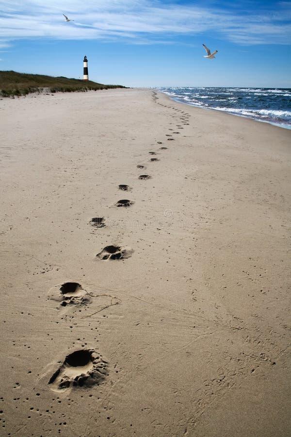 прибой песка следов ноги стоковые фото
