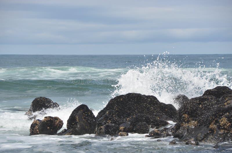 Прибой ударяет утесы на пляже заводи Fogarty, побережье Орегона стоковые фото